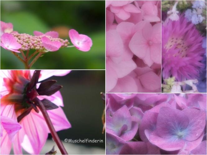 Blumen rosa Kopie